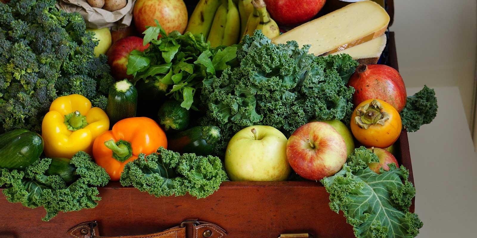 Lebensmittel vor Vernichtung bewahren- Gesunde Ernährung für Menschen mit geringem Einkommen!